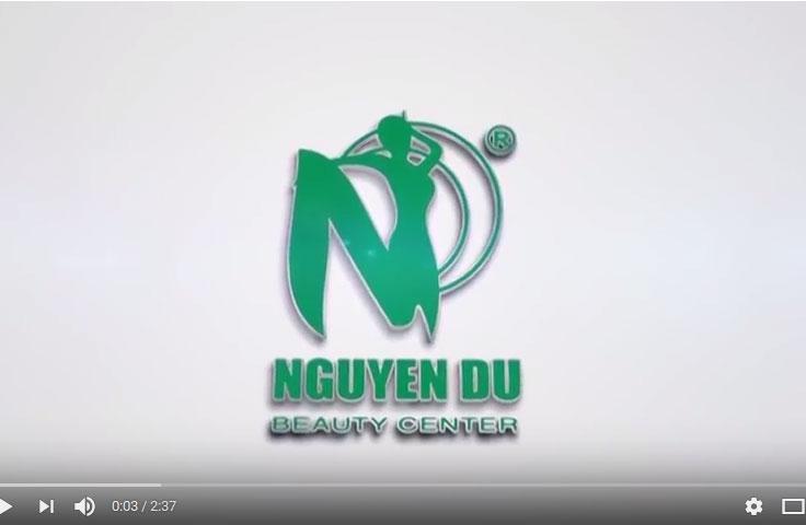 Giới thiệu về Nguyễn Du